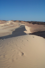 Sand Dune in The Sinai 3 (Emma Loveridge)