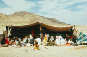 A Bedouin Tent in Sinai (Emma Loveridge)